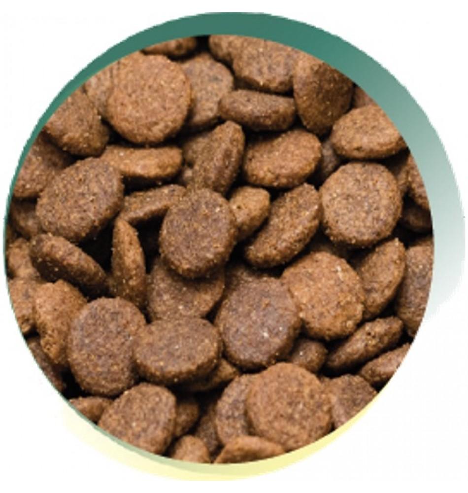 Rabbit And Potato Dog Food Uk