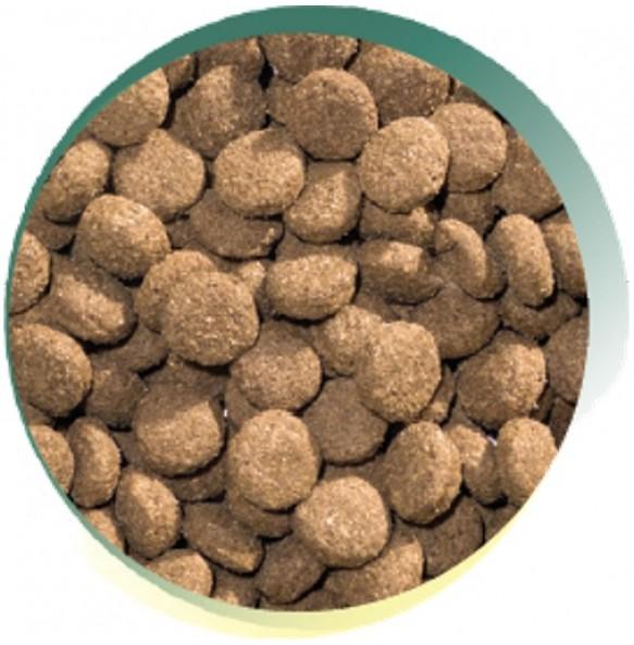 Lamb & Rice Adult Dog -  Naturals