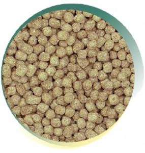 Winter Wheatgerm Pond Pellet
