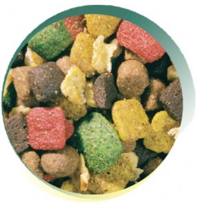 Gold Muesli for Working Dogs - VAT FREE